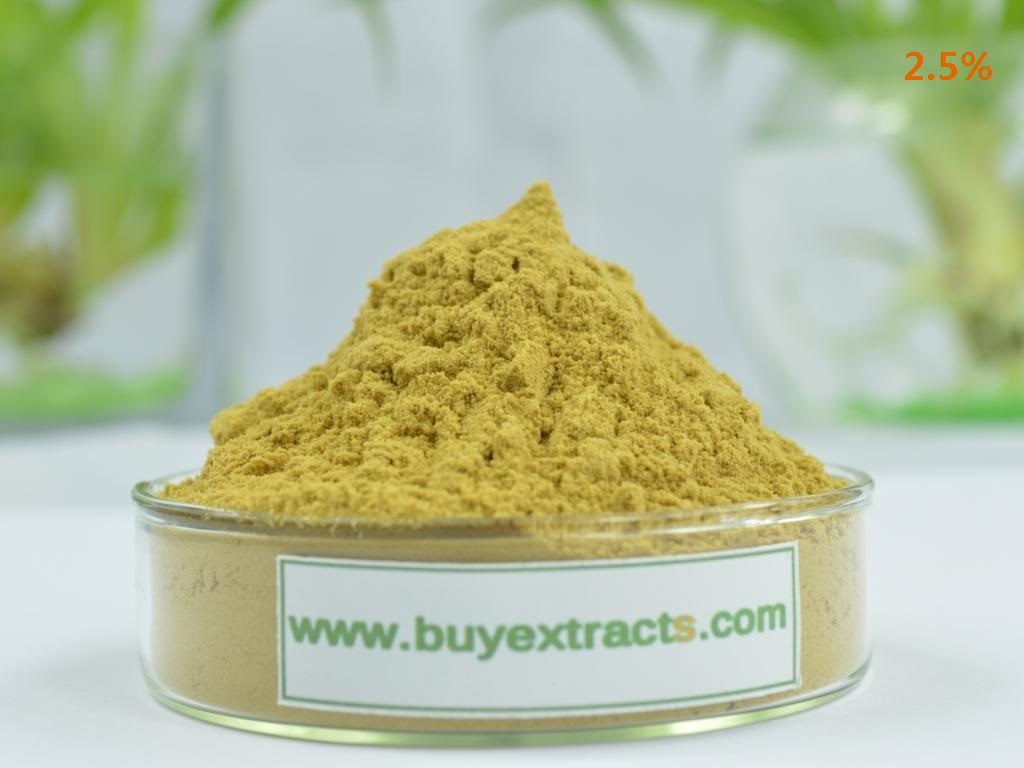 buy Black cdhosh extract