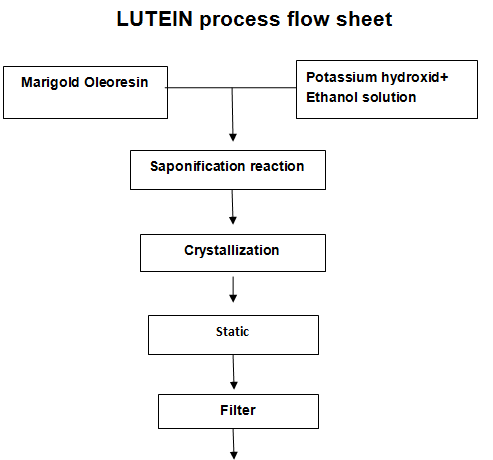 LUTEIN process flow sheet