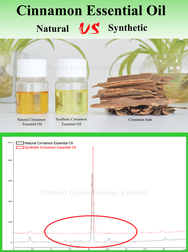 Synthetic and Natural Cinnamon Oil