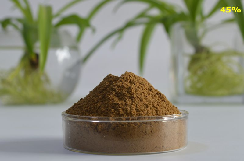 Tribulus Terrestris Extract 45%