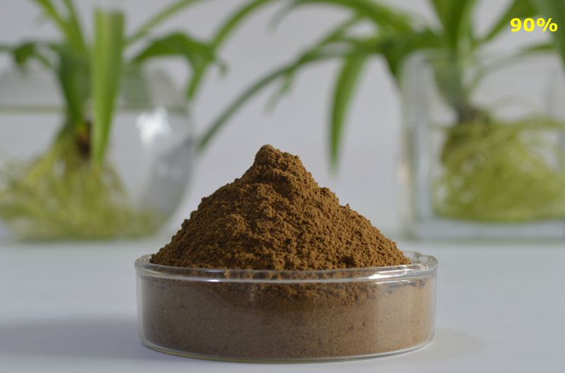 Tribulus Terrestris Extract 90%