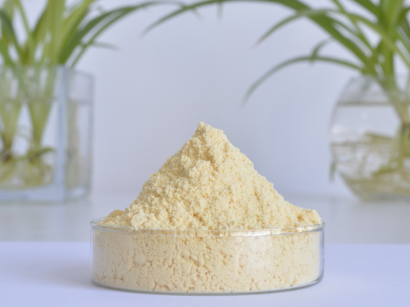 Water-soluble Ginger Powder