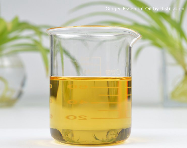 Ginger Essential Oil by distillation